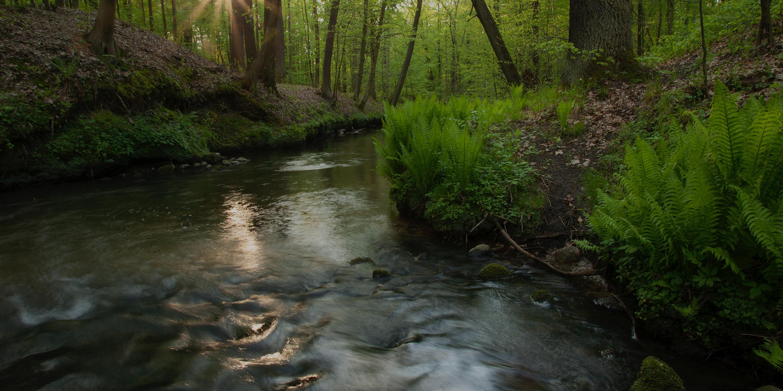 Nie wrzucjamy Marzanny do wody – czyli 1. Dzień Wiosny na Odrze