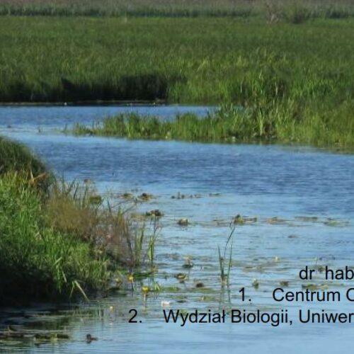Prezentacja: Susza i powódź – Mokradła nadrzeczne kluczem do zrównoważonej gospodarki wodnej