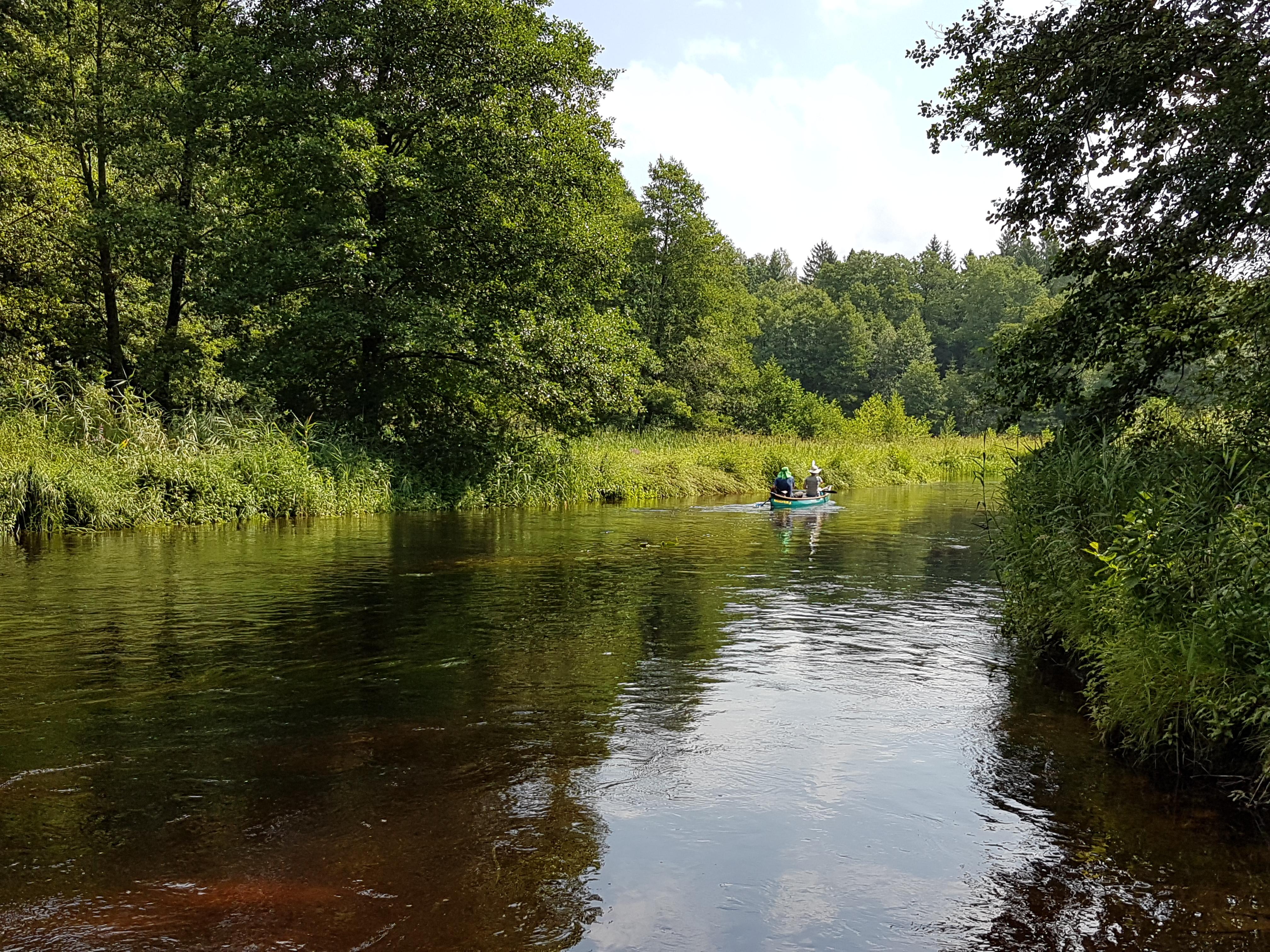 Artykuł: Już tylko jedna trzecia najdłuższych rzek na świecie nie została przekształcona przez człowieka i płynie swobodnie!