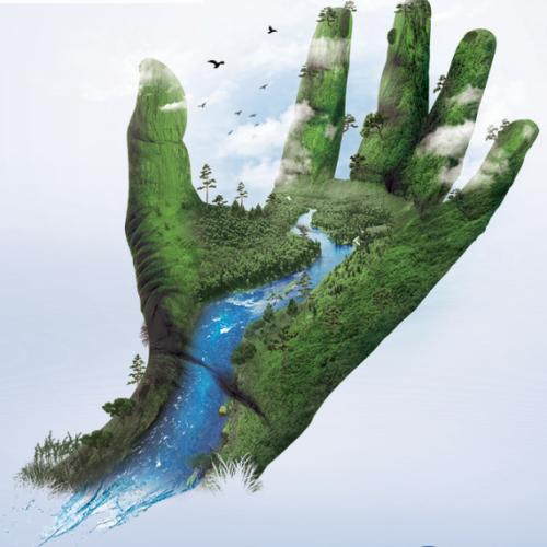 Wyrusz na rzeczną przygodę z kartami edukacyjnymi Strażników Rzek WWF!