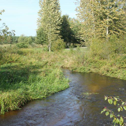 Rzeka nas urzekła – podsumowanie akcji!