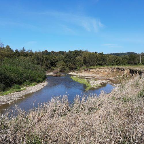 Wody Polskie nielegalnie niszczą rzeki