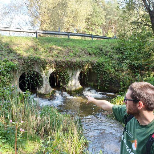 Zostań wolontariuszem w programie Strażnicy Rzek WWF i lokalizuj bariery na rzekach!